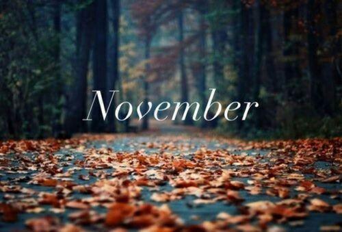 2014年11月のオススメ記事・人気記事ランキング
