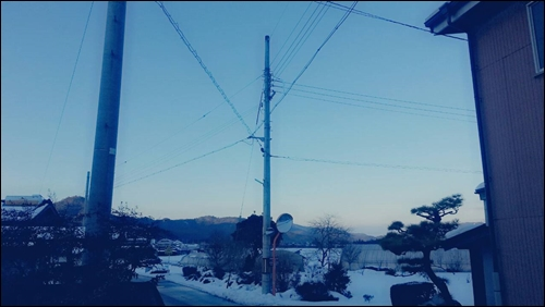 また帰ってくるよ【兵庫】今年もよろしくね【東京】34542
