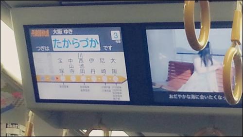 また帰ってくるよ【兵庫】今年もよろしくね【東京】34526