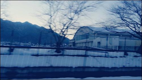 また帰ってくるよ【兵庫】今年もよろしくね【東京】34536