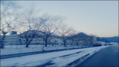 また帰ってくるよ【兵庫】今年もよろしくね【東京】34537