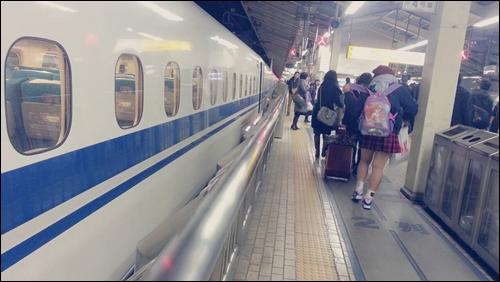 また帰ってくるよ【兵庫】今年もよろしくね【東京】34522