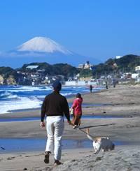 【FAIR by U-REALM】鎌倉七里ヶ浜ってこんなところです5