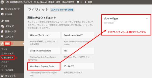 【WordPress Popular Posts】人気記事ランキングを表示出来るワードプレスプラグイン9
